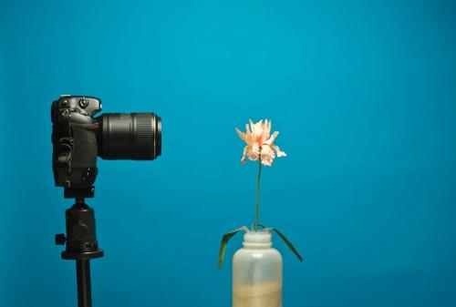 Nikon Macro Lens