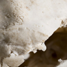 Side-Detail-9208-Sm