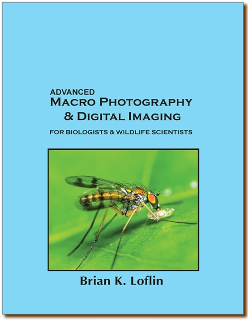 macro photography & digital imaging cover-sm